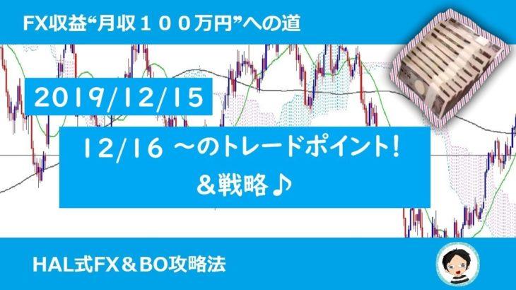 【FXスイングトレード必勝戦略12/15】FX収益月収100万円への道